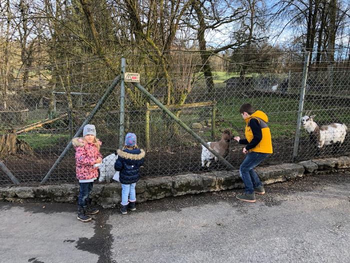 Frühling im Tierpark Langenthal
